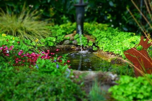 garden-768142_640