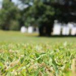 Obrana před žlutým trávníkem? Pořiďte si kvalitní závlahový systém