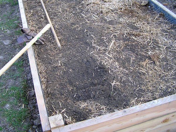 půda pod mulčem