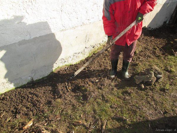 likvidace kořenů kopřiv ploskořezem