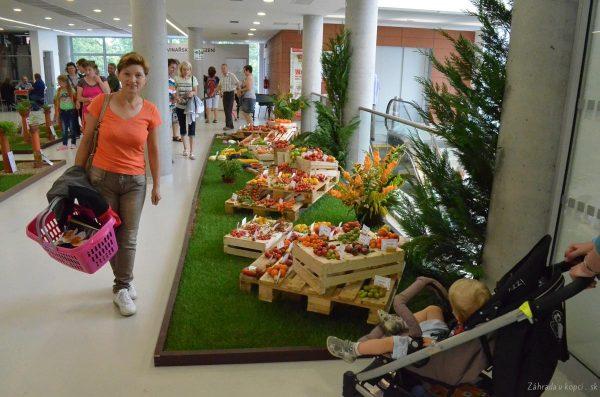 výstava Flora Olomouc