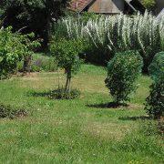 Budujeme zahradu ve svahovitém terénu
