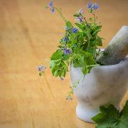 Proč nesmí na zahrádce chybět bylinky a jaké pěstovat?