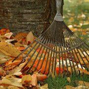 Připravte zahradu na podzim